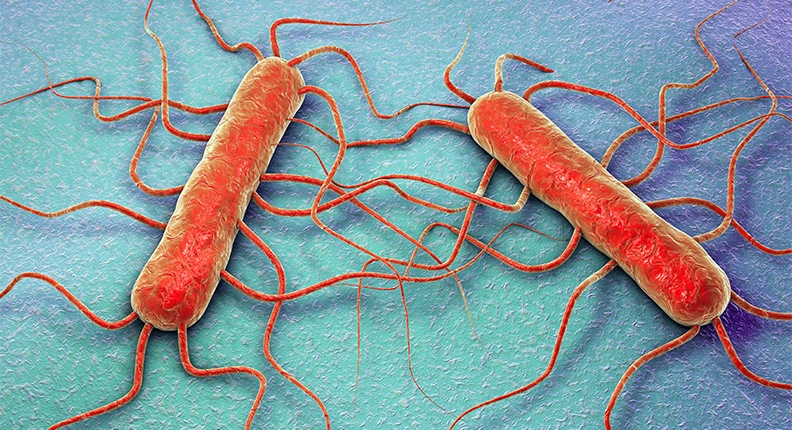 Go with Your Gut—Your Gut Microbiome That Is!